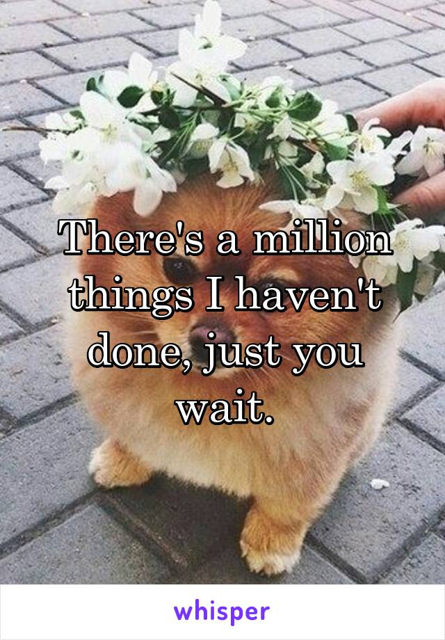 There's a million things I haven't done, just you wait.