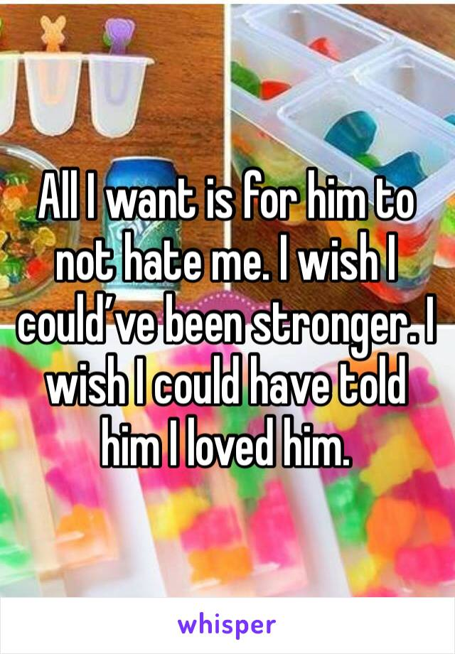 All I want is for him to not hate me. I wish I could've been stronger. I wish I could have told him I loved him.