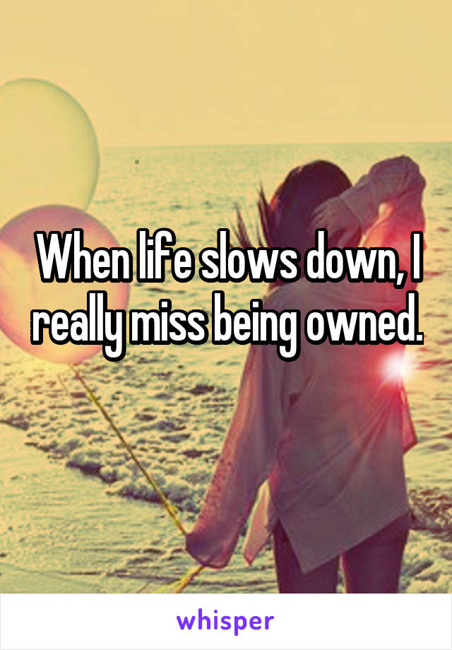 When life slows down, I really miss being owned.
