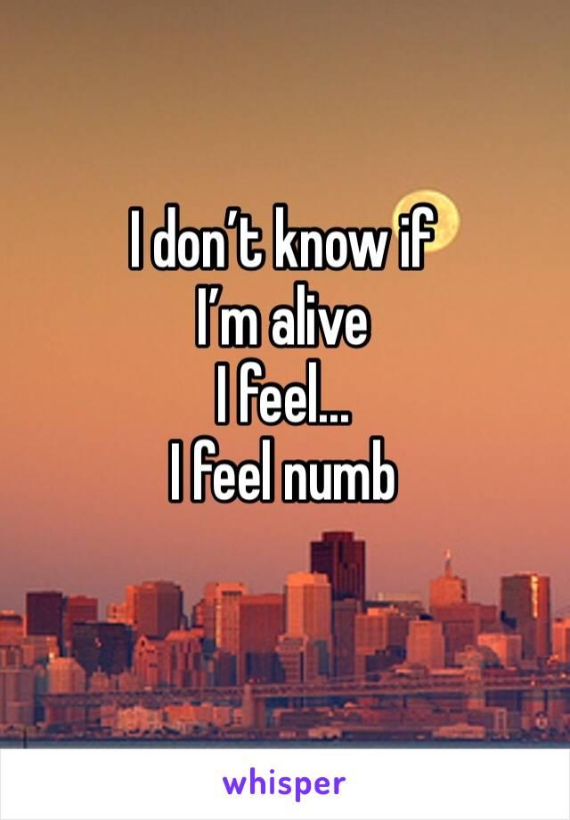 I don't know if  I'm alive  I feel... I feel numb