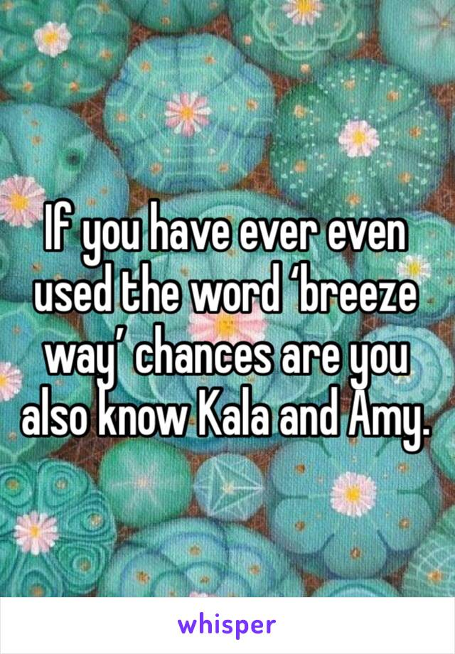 If you have ever even used the word 'breeze way' chances are you also know Kala and Amy.