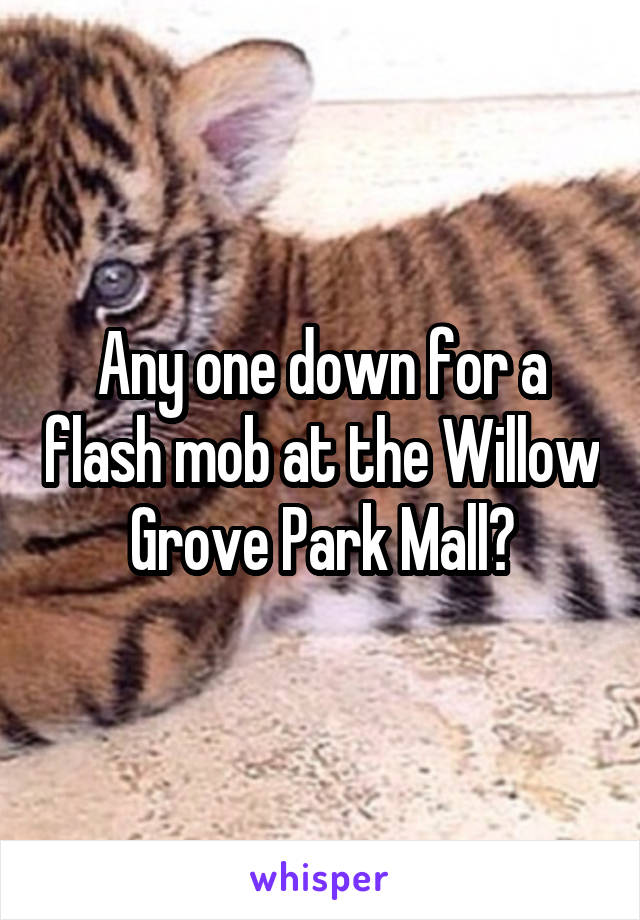 Any one down for a flash mob at the Willow Grove Park Mall?