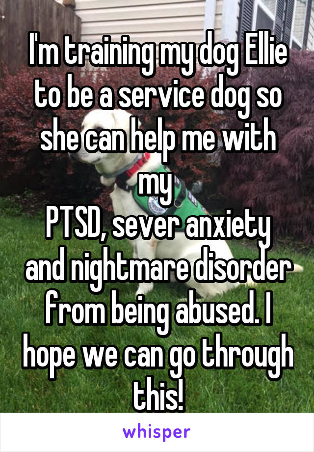 I'm training my dog Ellie to be a service dog so she can help me with my  PTSD, sever anxiety and nightmare disorder from being abused. I hope we can go through this!