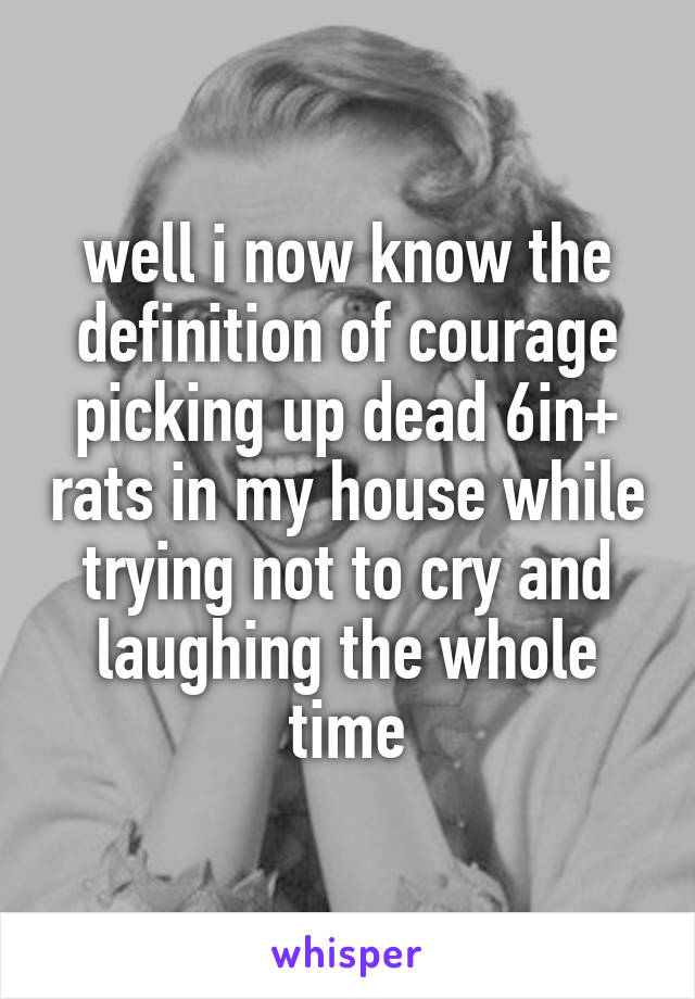 well i now know the definition of courage picking up dead 6in+ rats in my house while trying not to cry and laughing the whole time