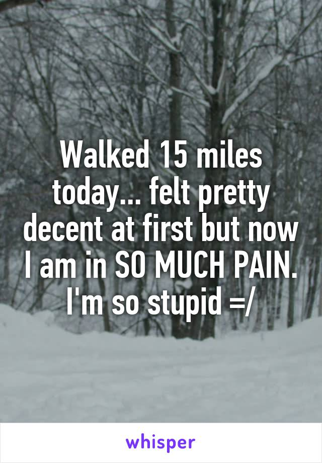 Walked 15 miles today... felt pretty decent at first but now I am in SO MUCH PAIN. I'm so stupid =/