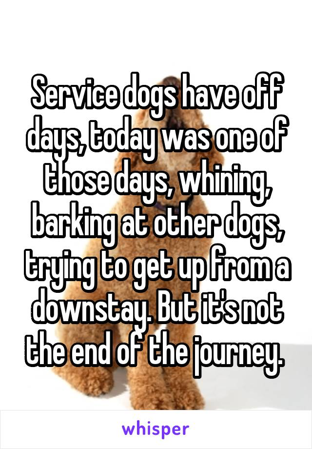 Service dogs have off days, today was one of those days, whining, barking at other dogs, trying to get up from a downstay. But it's not the end of the journey.