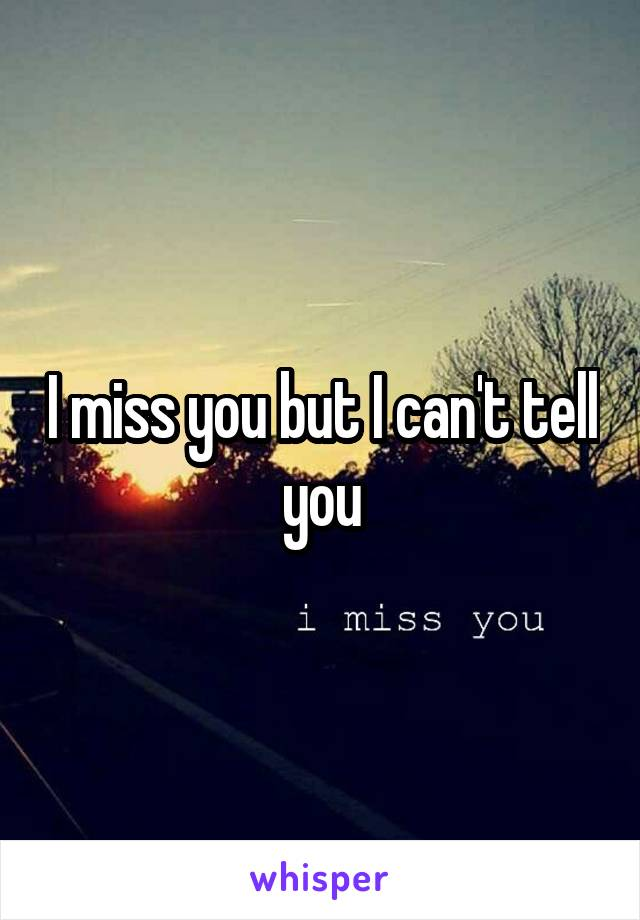 I miss you but I can't tell you