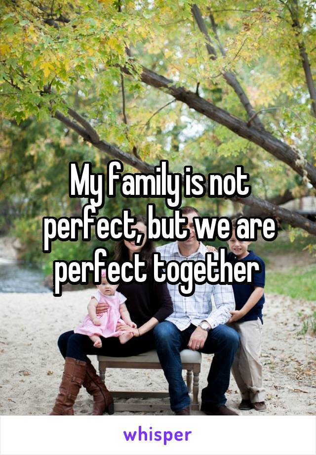 My family is not perfect, but we are perfect together