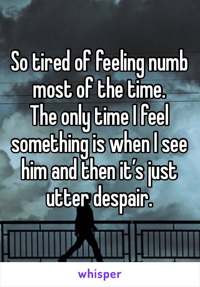 So tired of feeling numb most of the time.  The only time I feel something is when I see him and then it's just utter despair.