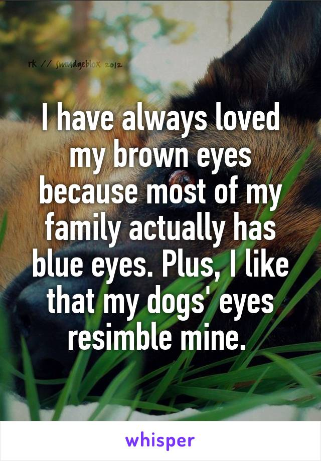I have always loved my brown eyes because most of my family actually has blue eyes. Plus, I like that my dogs' eyes resimble mine.