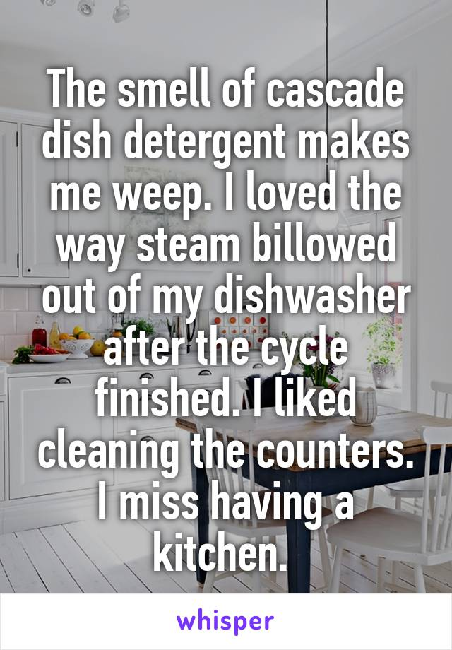 The smell of cascade dish detergent makes me weep. I loved the way steam billowed out of my dishwasher after the cycle finished. I liked cleaning the counters. I miss having a kitchen.