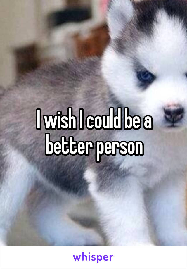 I wish I could be a better person