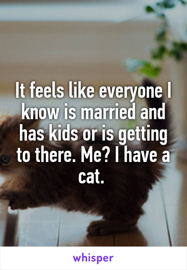It feels like everyone I know is married and has kids or is getting to there. Me? I have a cat.