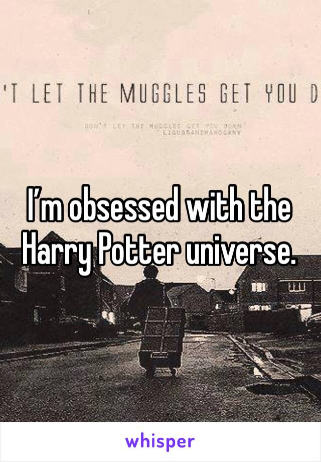 I'm obsessed with the Harry Potter universe.