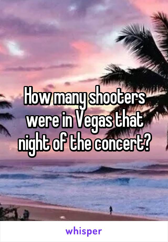 How many shooters were in Vegas that night of the concert?