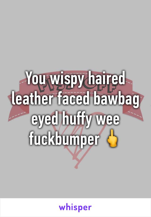 You wispy haired leather faced bawbag eyed huffy wee fuckbumper 🖕