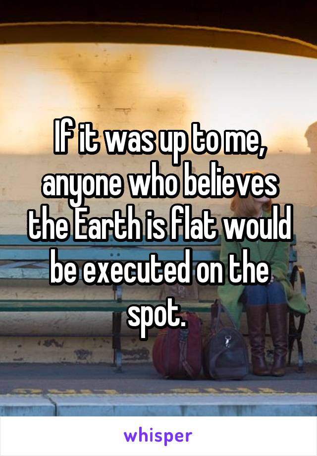 If it was up to me, anyone who believes the Earth is flat would be executed on the spot.