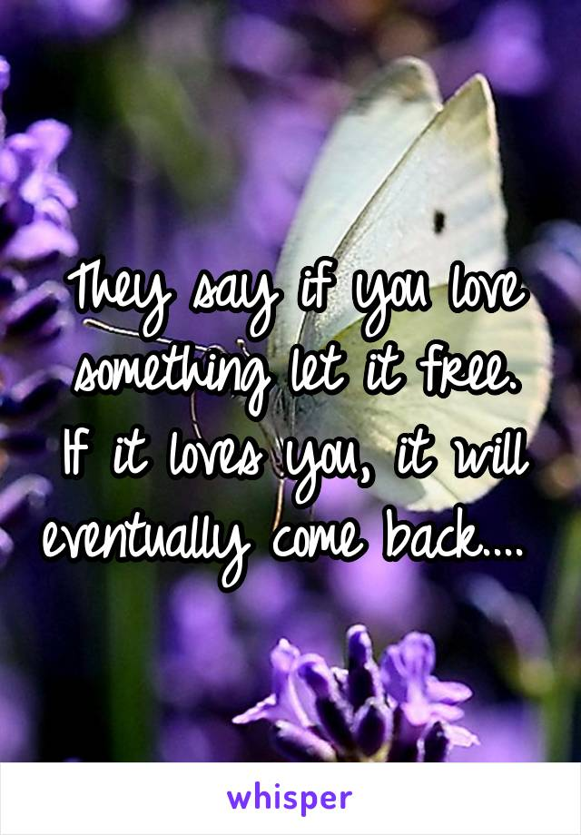 They say if you love something let it free. If it loves you, it will eventually come back....