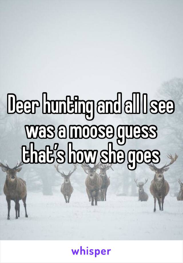 Deer hunting and all I see was a moose guess that's how she goes