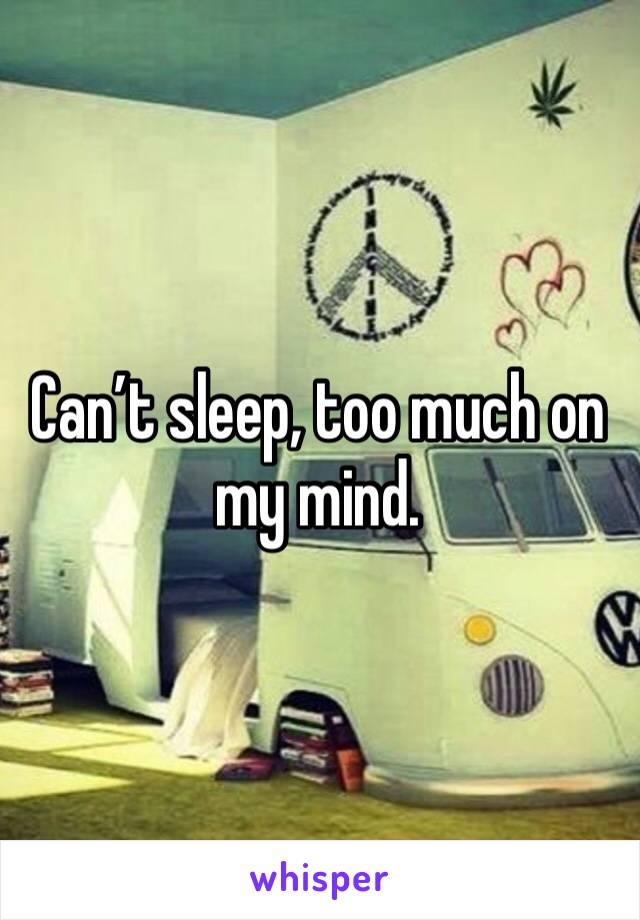 Can't sleep, too much on my mind.