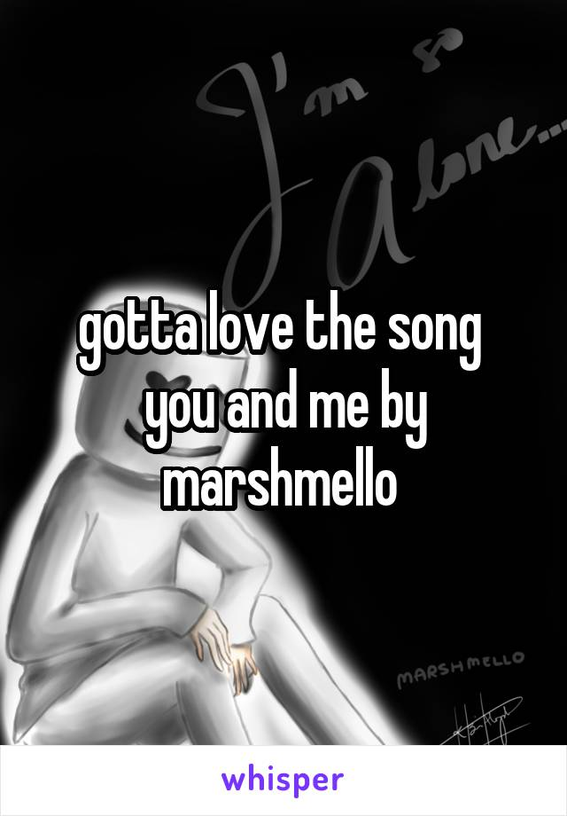 gotta love the song  you and me by marshmello