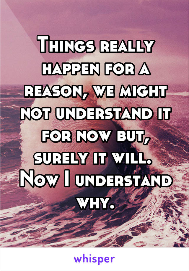 Things really happen for a reason, we might not understand it for now but, surely it will.  Now I understand why.