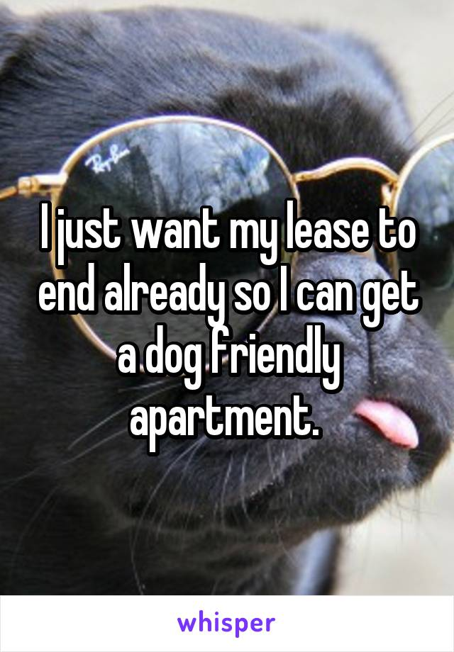 I just want my lease to end already so I can get a dog friendly apartment.