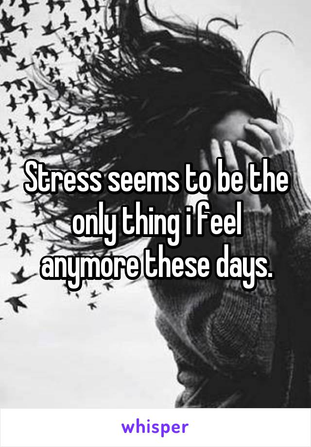 Stress seems to be the only thing i feel anymore these days.