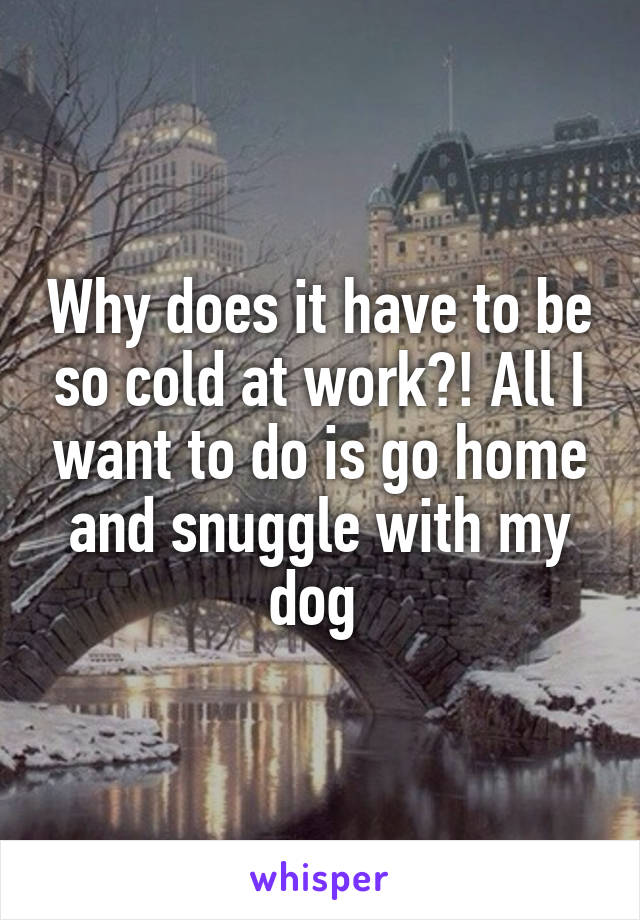 Why does it have to be so cold at work?! All I want to do is go home and snuggle with my dog