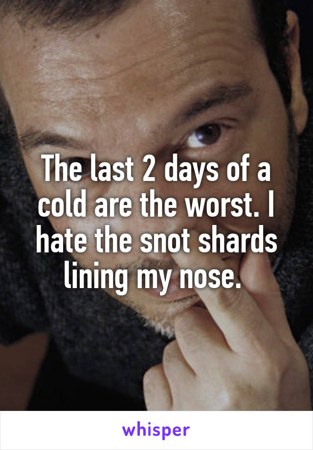The last 2 days of a cold are the worst. I hate the snot shards lining my nose.