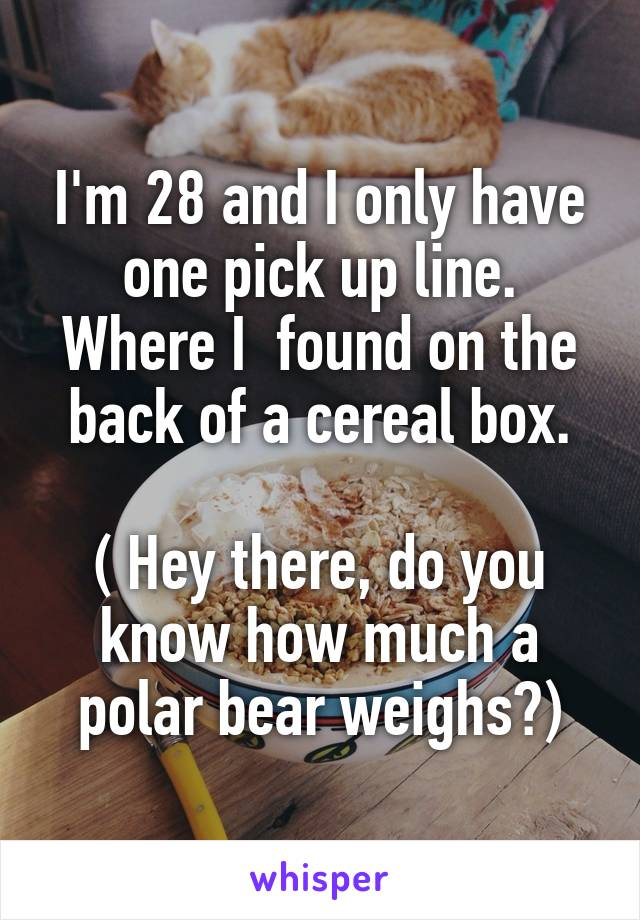 I'm 28 and I only have one pick up line. Where I  found on the back of a cereal box.  ( Hey there, do you know how much a polar bear weighs?)