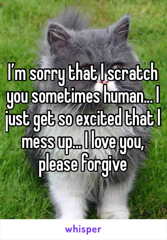 I'm sorry that I scratch you sometimes human... I just get so excited that I mess up... I love you, please forgive