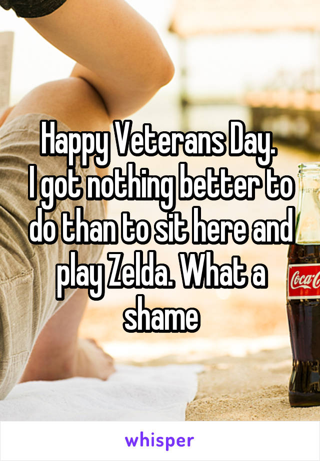 Happy Veterans Day.  I got nothing better to do than to sit here and play Zelda. What a shame