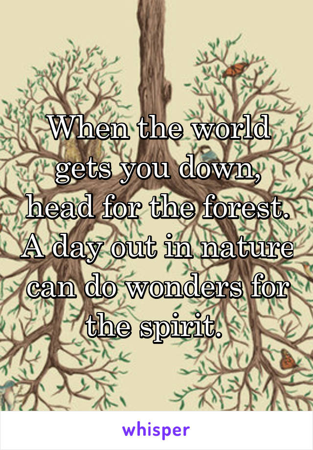 When the world gets you down, head for the forest. A day out in nature can do wonders for the spirit.