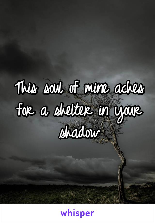 This soul of mine aches for a shelter in your shadow