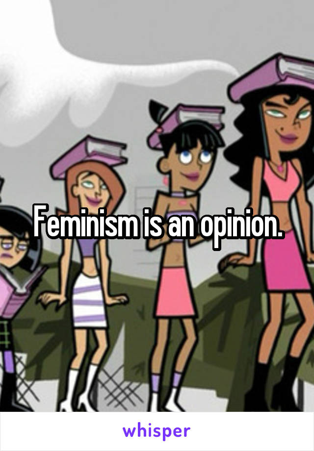 Feminism is an opinion.