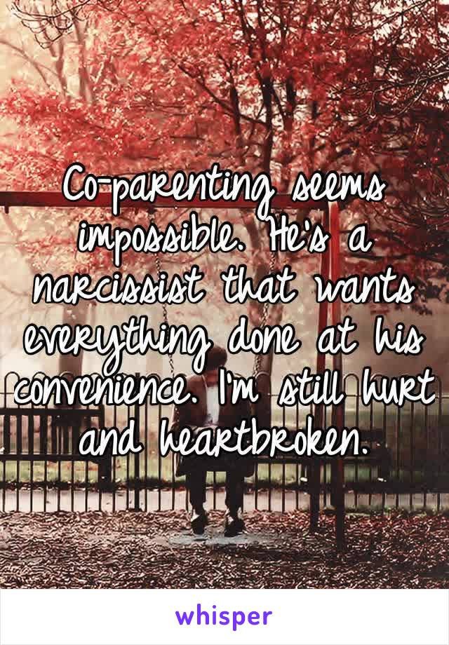 Co-parenting seems impossible. He's a narcissist that wants everything done at his convenience. I'm still hurt and heartbroken.