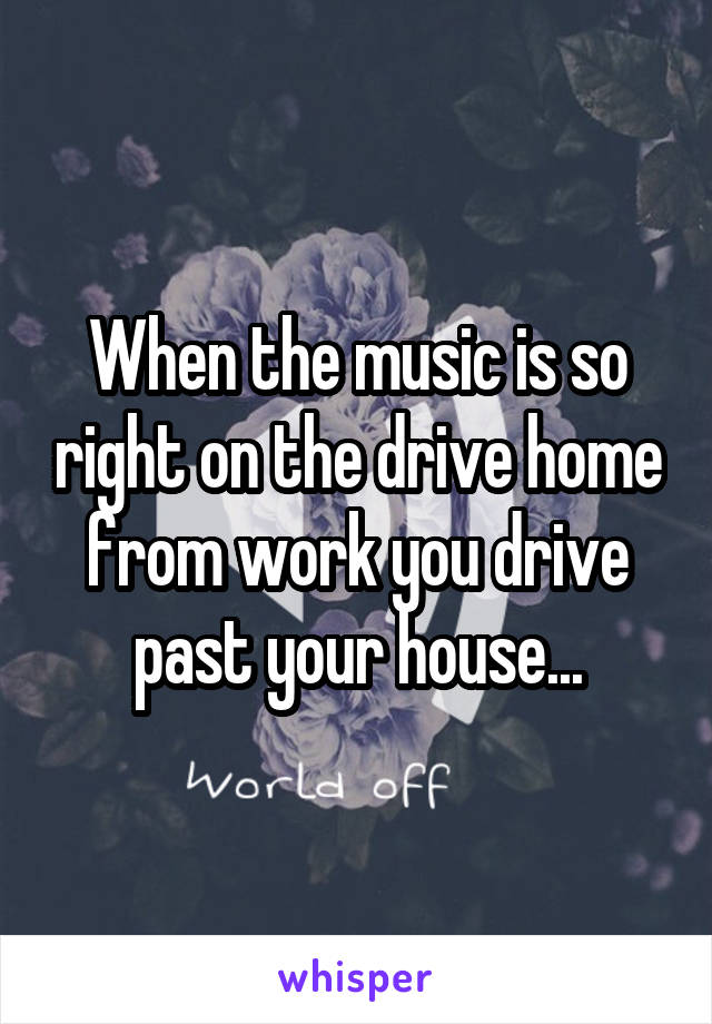 When the music is so right on the drive home from work you drive past your house...
