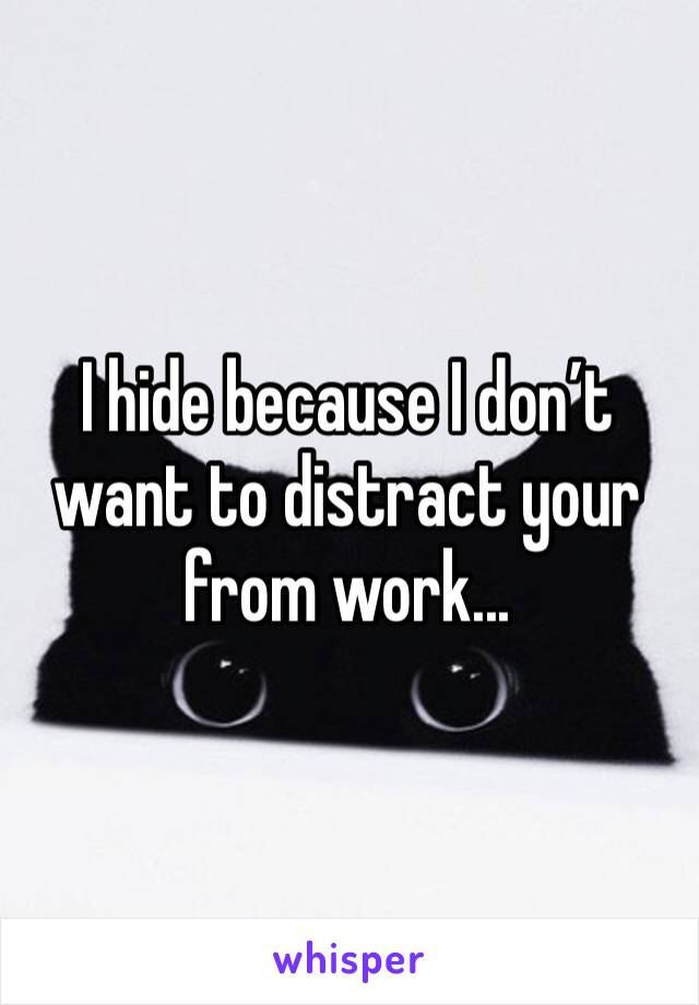 I hide because I don't want to distract your from work...