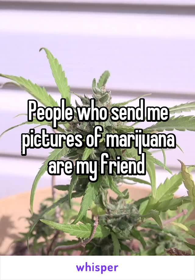 People who send me pictures of marijuana are my friend