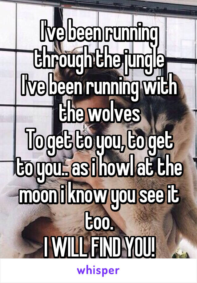 I've been running through the jungle I've been running with the wolves To get to you, to get to you.. as i howl at the moon i know you see it too. I WILL FIND YOU!