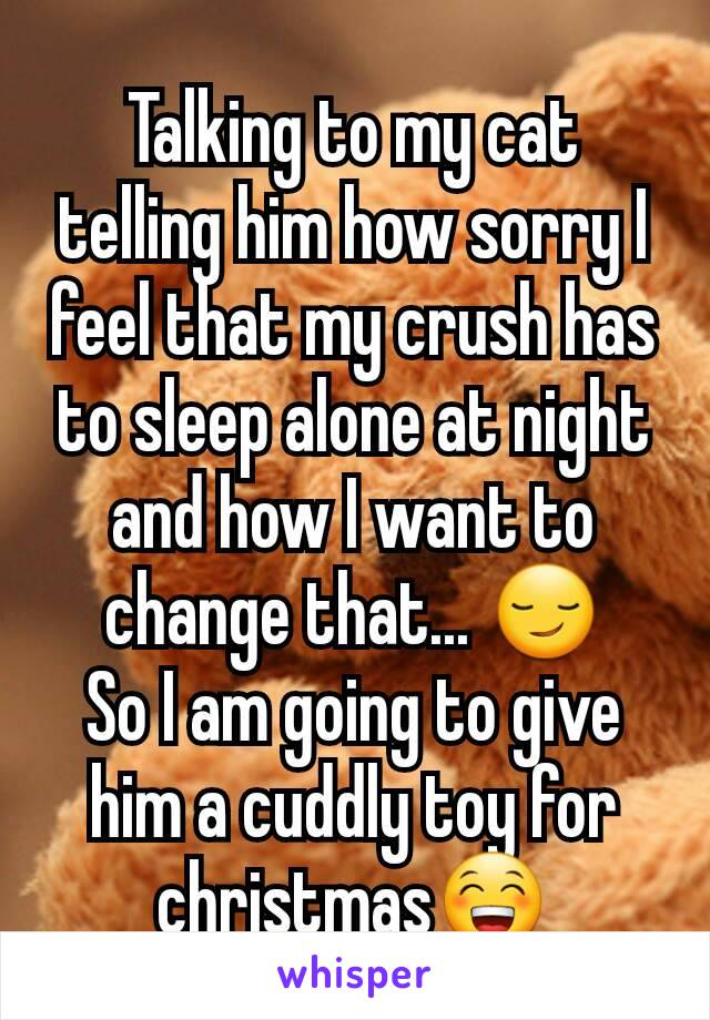 Talking to my cat telling him how sorry I feel that my crush has to sleep alone at night and how I want to change that... 😏 So I am going to give him a cuddly toy for christmas😁