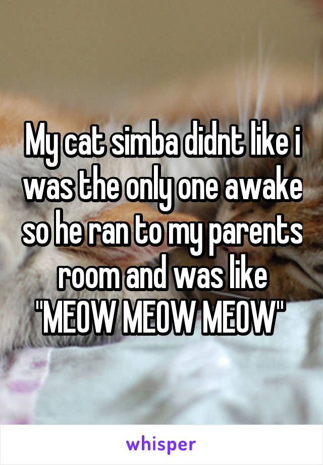 """My cat simba didnt like i was the only one awake so he ran to my parents room and was like """"MEOW MEOW MEOW"""""""