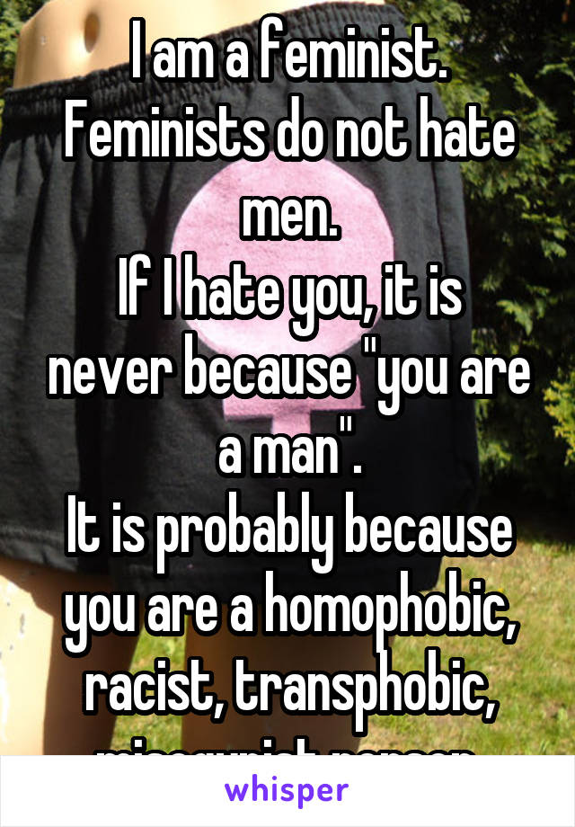 """I am a feminist. Feminists do not hate men. If I hate you, it is never because """"you are a man"""". It is probably because you are a homophobic, racist, transphobic, misogynist person."""