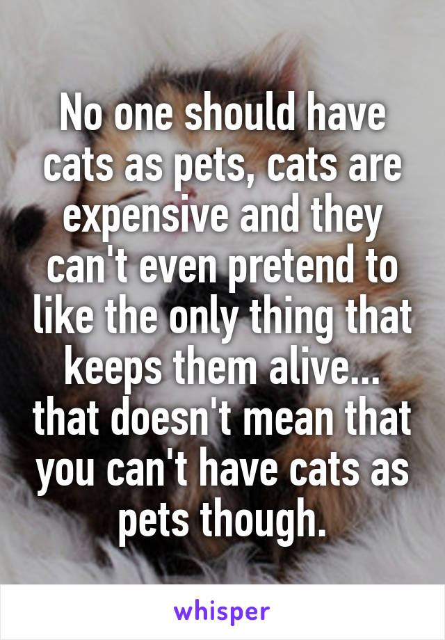 No one should have cats as pets, cats are expensive and they can't even pretend to like the only thing that keeps them alive... that doesn't mean that you can't have cats as pets though.