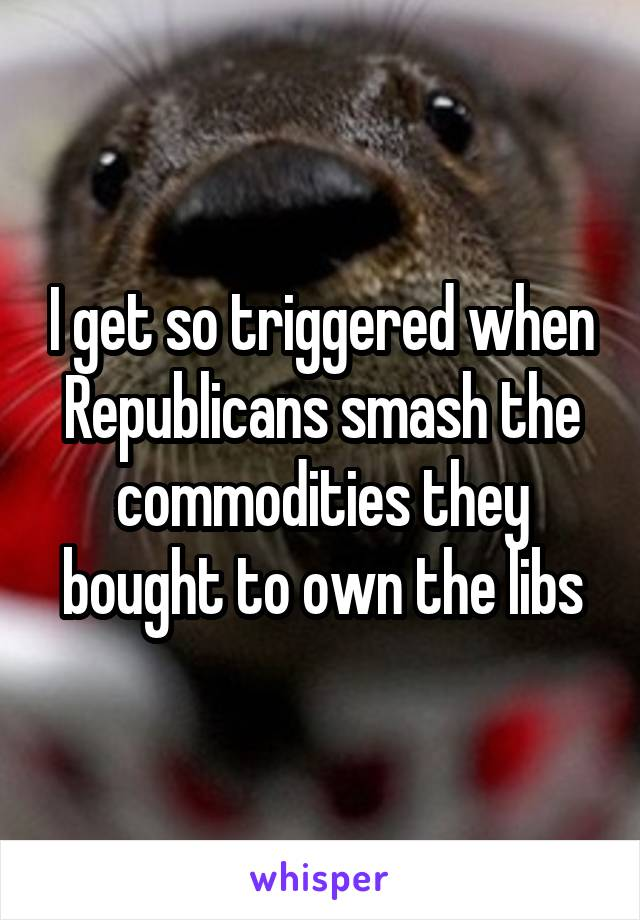 I get so triggered when Republicans smash the commodities they bought to own the libs
