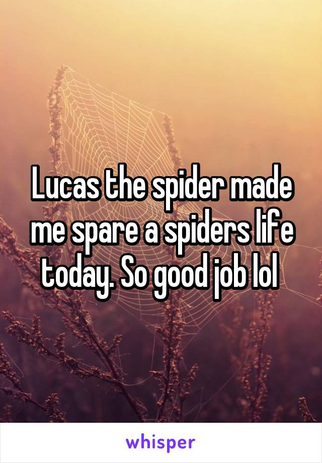 Lucas the spider made me spare a spiders life today. So good job lol