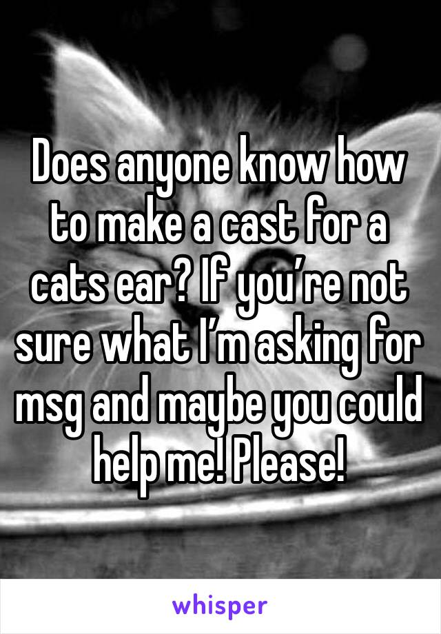 Does anyone know how to make a cast for a cats ear? If you're not sure what I'm asking for msg and maybe you could help me! Please!