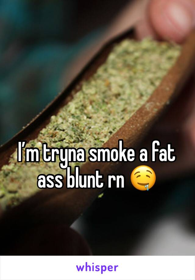I'm tryna smoke a fat ass blunt rn 🤤
