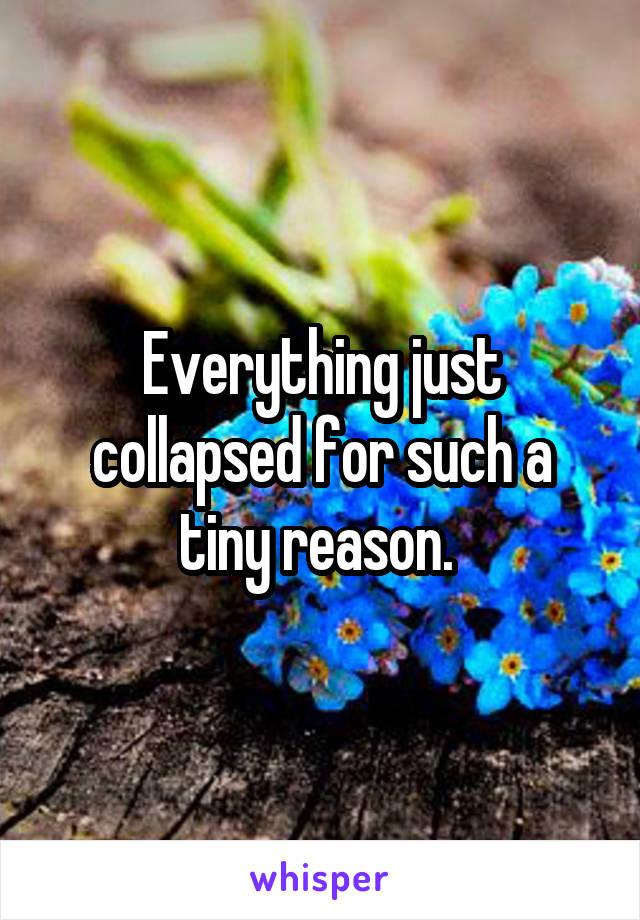 Everything just collapsed for such a tiny reason.
